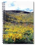 Okanagan Valley Sunflowers 1 Spiral Notebook