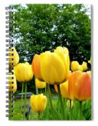 Okanagan Valley Tulips Spiral Notebook