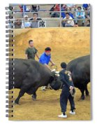 Okinawan Culture Bull Versus Bull Okinawan Bullfighting Spiral Notebook