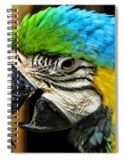 Old And Beautiful Spiral Notebook