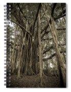 Old Banyan Tree Spiral Notebook