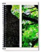 Old Barks Diptych - Deciduous Trees Spiral Notebook