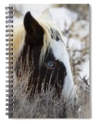 Old Blue Eyes Spiral Notebook