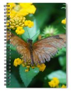Old Butterfly Spiral Notebook