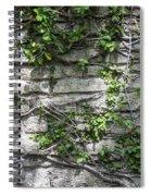 Old Coquina Wall Spiral Notebook