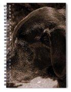 Old Dog Spiral Notebook