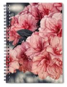 Old Fashion Azalea Spiral Notebook