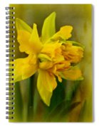 Old Fashioned Daffodil Spiral Notebook