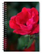 Old Fashioned Rose Spiral Notebook