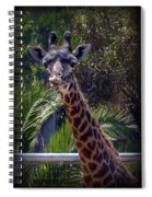 Old Funny Face Spiral Notebook
