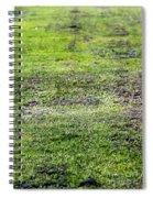 Old Green Grass Spiral Notebook
