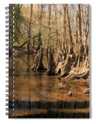 Old Growth Spiral Notebook