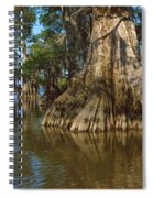 Old-growth Cypresses At Lake Fausse Spiral Notebook