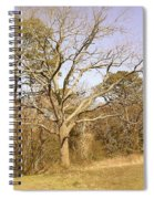 Old Haunted Tree Spiral Notebook