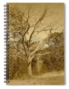 Old Haunted Tree In Sepia Spiral Notebook