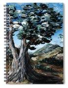 Old Olive Tree Spiral Notebook