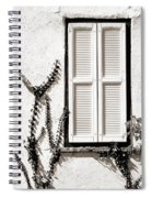 Old Painted Shutter 2 Spiral Notebook