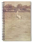 Old Pelican Photograph Spiral Notebook
