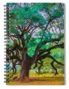 Old Plantation Oak Spiral Notebook