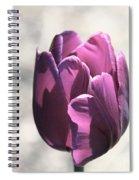 Old Purple Spiral Notebook