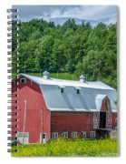 Old Red 3623c Spiral Notebook