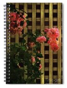 Old Roses, Old Wood Spiral Notebook