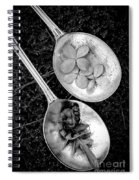 Old Silver Spoons Spiral Notebook
