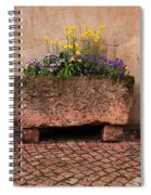 Old Stone Trough And Flowers In Alsace France Spiral Notebook