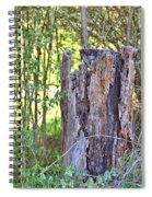 Old Stump Spiral Notebook