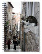 Old Town Alley Cat Spiral Notebook