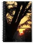 Old Tree And Sunset Spiral Notebook