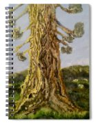 Old Tree In Spring Light Spiral Notebook