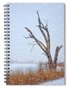 Old Tree In Winter Spiral Notebook