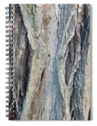 Old Tree Wrinkles Spiral Notebook