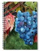 Old Vine Zinfandel Spiral Notebook