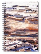 Old Weathered Log On The Sea Shore Spiral Notebook
