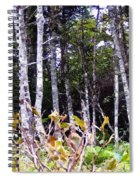 Old Wood Stand Painterly Style Spiral Notebook