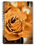 Old World Roses  Spiral Notebook