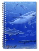 Oligocene Sea Spiral Notebook