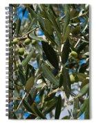 Olive Branch Spiral Notebook