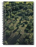Olive Farmland In Spain Spiral Notebook