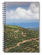 Olive Trees In A Field, Ubeda, Jaen Spiral Notebook