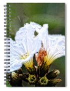 Olive You - Olive Flower Art By Sharon Cummings Spiral Notebook