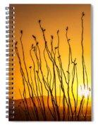 Oliver Lee Sunset Spiral Notebook