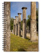 Olympia Ruins Spiral Notebook