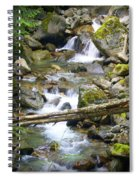 Olympic Range Stream Spiral Notebook