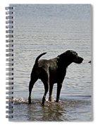 On A Beach 2 Spiral Notebook