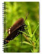 On A Rainy Day Spiral Notebook