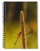 On A Summer Morning Spiral Notebook