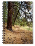 On A Trail From The Past To The Future Spiral Notebook